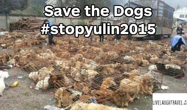 #stopyulin2015-yulin-dog-festival