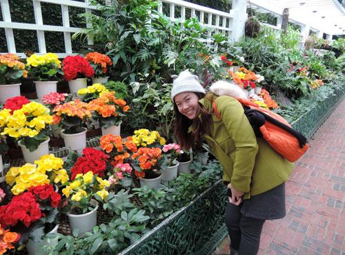 jeju-attractions-Yeomiji-Botanic-Gardens