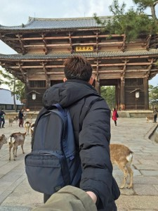 Travel-Nara-Deer-Park2